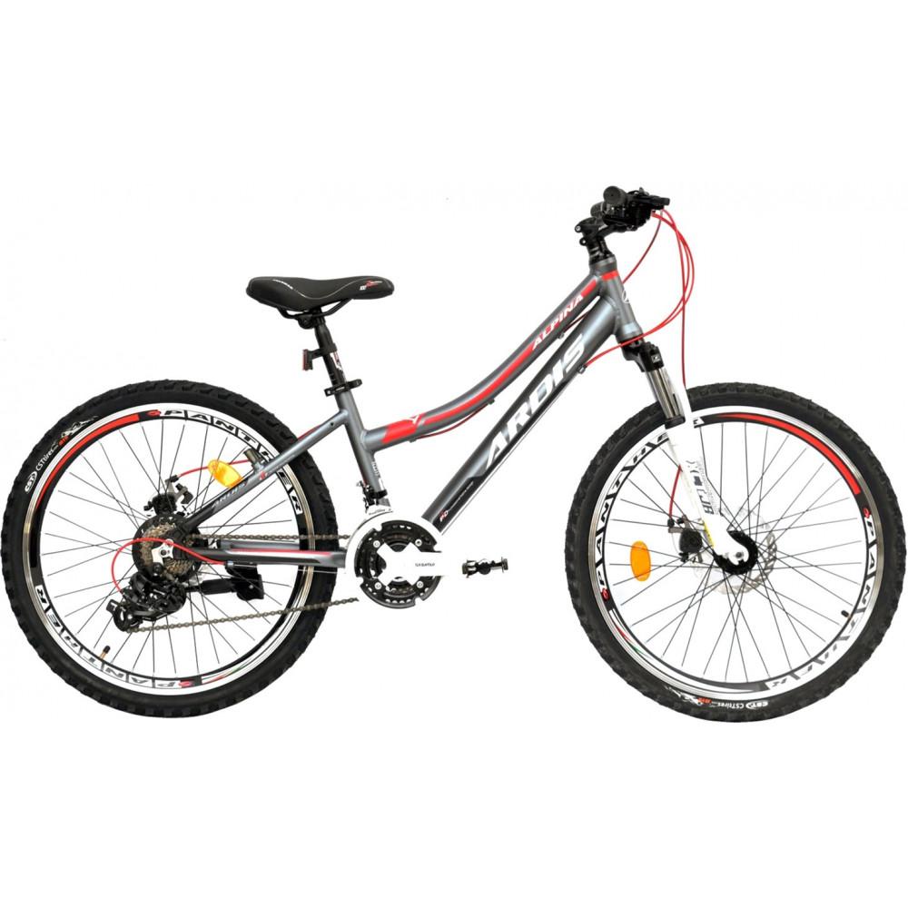 Велосипед Alpina (24)