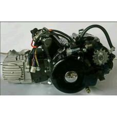 Двигатель Delta, Activ 110cc (МКПП 152FMH