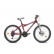 Велосипед LX-200 24 ECO